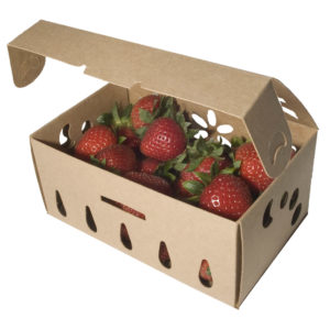sustainable one quart container with strawberries, open