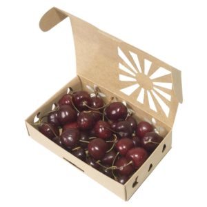 Organic cherries in recyclable nonplastic sustainable produce container