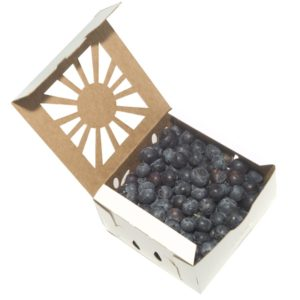 square-pint-white-blueberries--open
