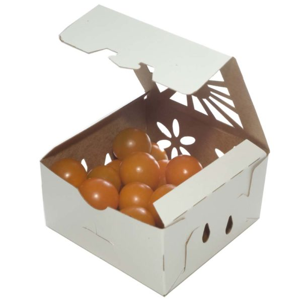 sustainable alternative container for organic cherry tomatoes