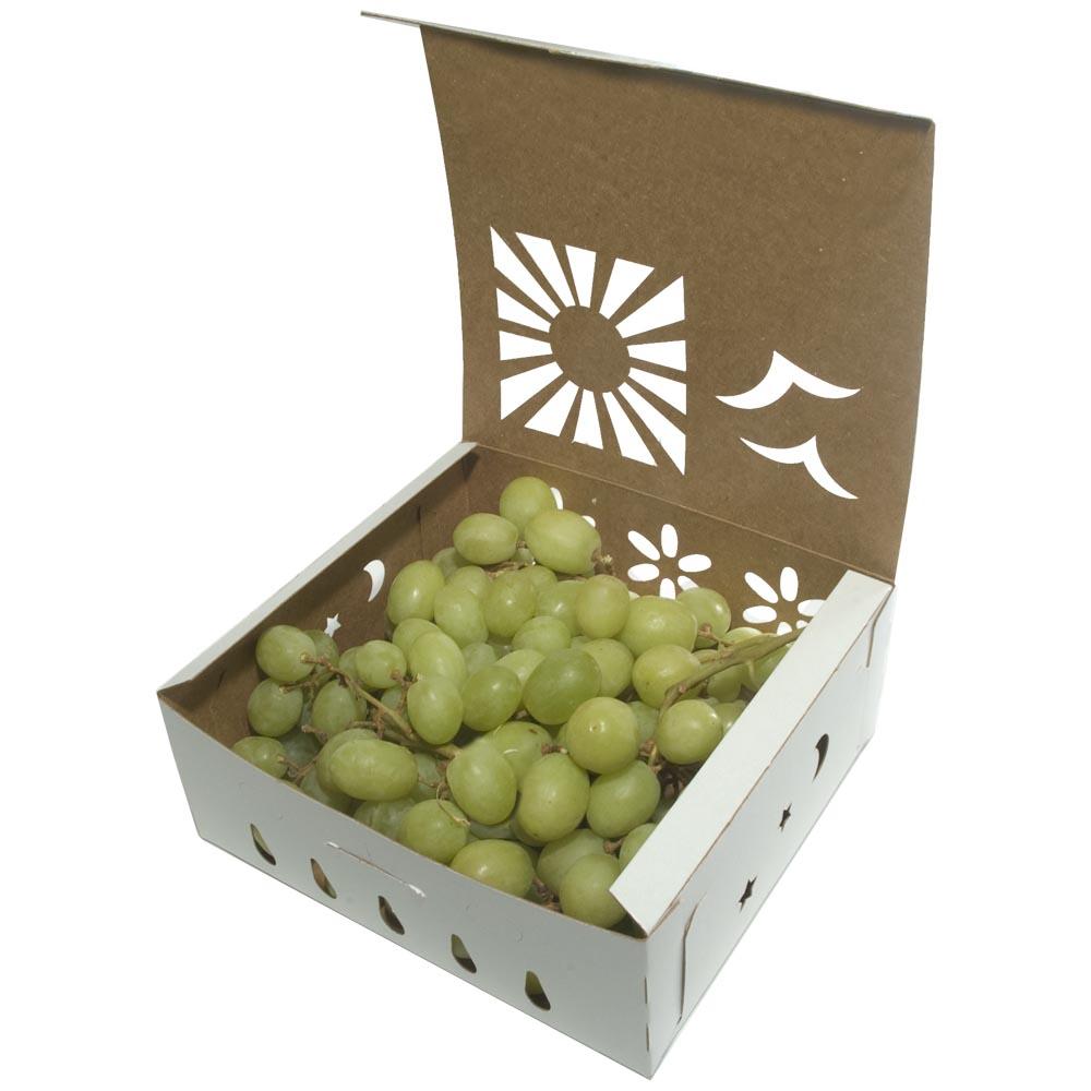 2-quart-white-grapes-open