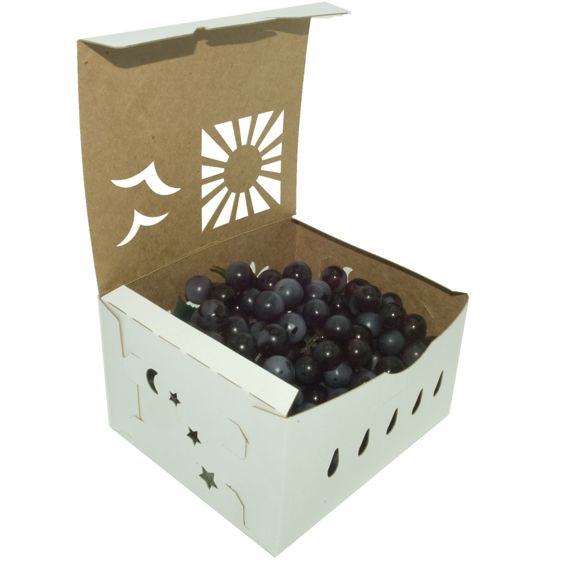 3-quart-grapes-open